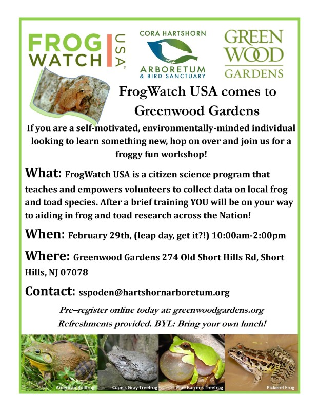 FrogWatch_Flyer_2016